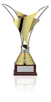 Gold Plated Distinctive Trophy Award