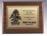 Economy Cherry Finished Plaque