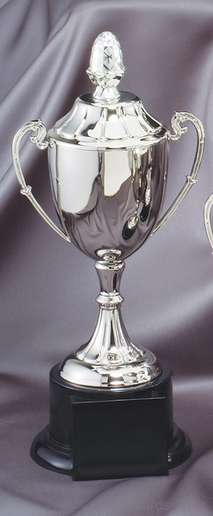 Nickel Plated Golf Cup Award 3